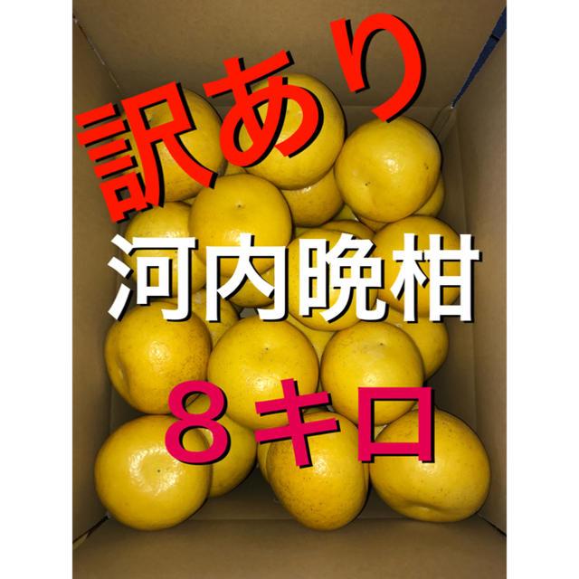 訳あり河内晩柑 8キロ 食品/飲料/酒の食品(フルーツ)の商品写真