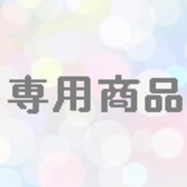 専用商品 エンタメ/ホビーのテレビゲーム(その他)の商品写真
