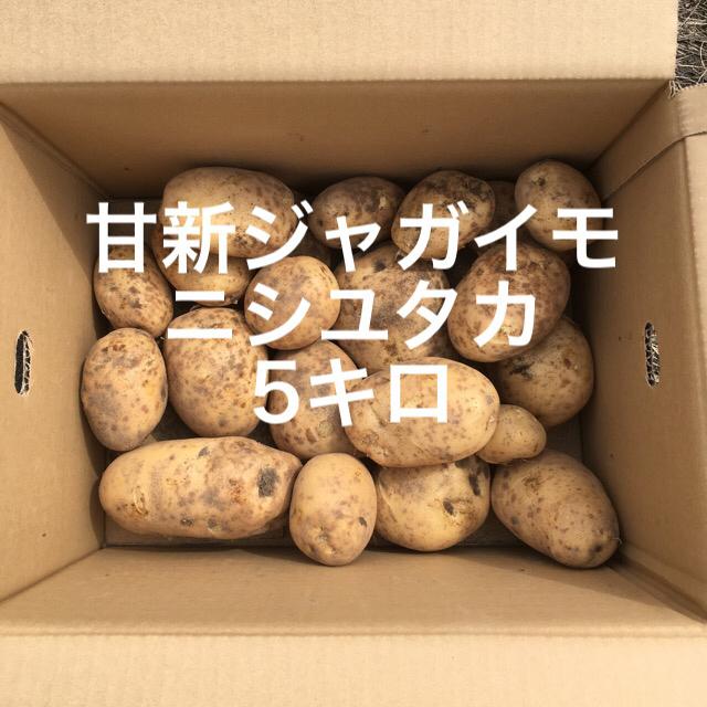 鹿児島産甘新ジャガイモ5キロ^_^ 食品/飲料/酒の食品(野菜)の商品写真