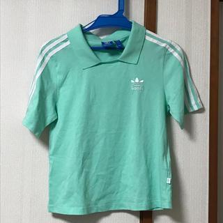 アディダス(adidas)の早い者勝ち!新品未使用 adidas Tシャツ(Tシャツ/カットソー(半袖/袖なし))