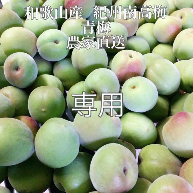 みーまま様専用【B】青梅10kg 3Lサイズ指定 紀州南高梅 食品/飲料/酒の食品(フルーツ)の商品写真