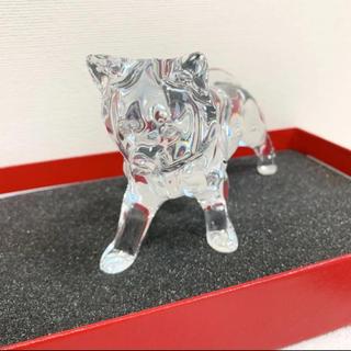 Baccarat - バカラ 干支シリーズ イヌ