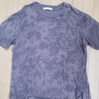 ナノユニバース(nano・universe)のナノ・ユニバース 柄Tシャツ ブラウン(Tシャツ/カットソー(半袖/袖なし))