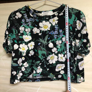 マメ(mame)のmame kurogouchi mame マメクロゴウチ Tシャツ(Tシャツ(半袖/袖なし))