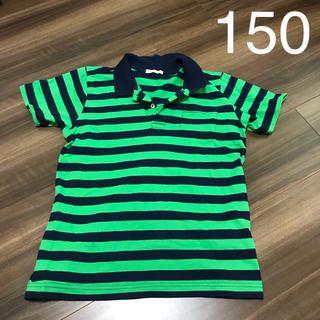 ジーユー(GU)のused♡GU ポロシャツ 150cm グリーンボーダー(Tシャツ/カットソー)
