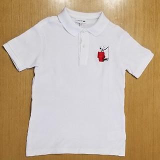 ラコステ(LACOSTE)のLACOSTE×peanuts ポロシャツ 120 130(Tシャツ/カットソー)