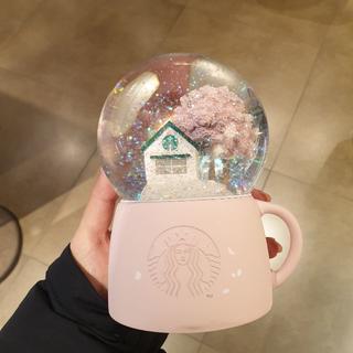 スターバックスコーヒー(Starbucks Coffee)の韓国 スタバ 桜 スノードーム(その他)