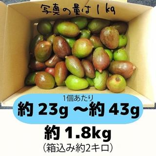 [青2]約1.8キロ グリーンマンゴー 青マンゴー 摘果マンゴー(フルーツ)