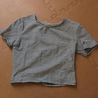 ザラ(ZARA)のZARA ショート丈 Tシャツ (Tシャツ(半袖/袖なし))
