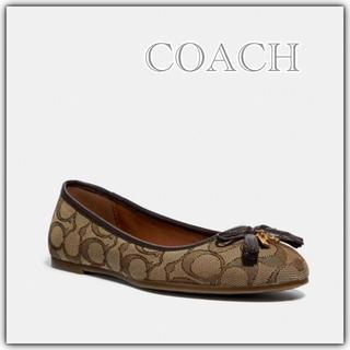 コーチ(COACH)の新品 COACH コーチ ベニー バレエ 23.0cm/サイズ6(バレエシューズ)