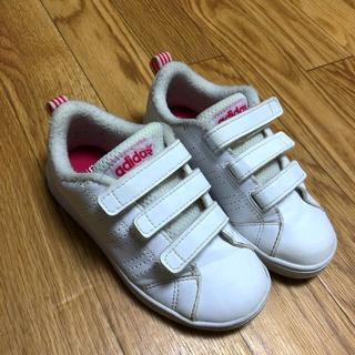 adidas - アディダスネオ  ローカットスニーカー 17センチ