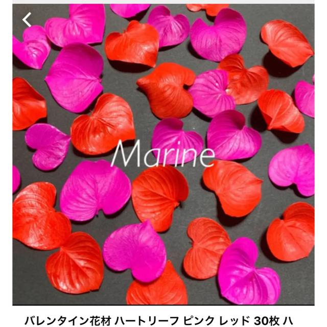 春夏カラー ハートリーフ 34枚 オリジナル加工 ハンドメイドのフラワー/ガーデン(ドライフラワー)の商品写真