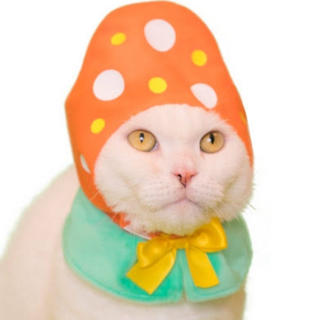 サンリオ(サンリオ)のねこのかぶりもの イースター(猫)