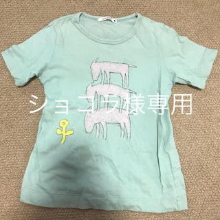 ミナペルホネン(mina perhonen)のミナペルホネン Tシャツ(Tシャツ/カットソー)
