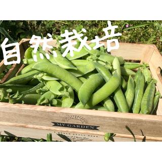 「自然栽培」実えんどう豆 (グリーンピース) 約800g