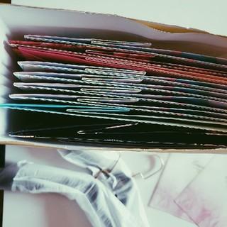レディー(Rady)のショッ袋10枚(ラッピング/包装)