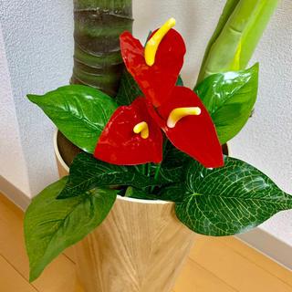 即発送🌸新品❤️南国風インテリアに*アンスリウム 造花 観葉植物🍀