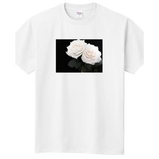 DIOR HOMME - アイスバーグ Tシャツ