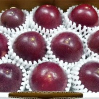 箱入り 贈答品にOK。沖縄県産 パッションフルーツ 1キロ