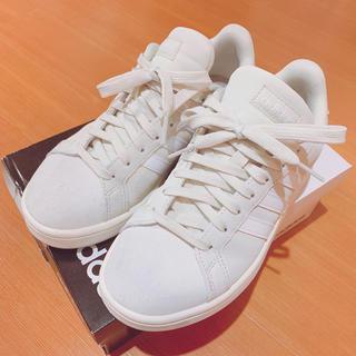 adidas - ❤︎人気完売カラー❤︎ アディダス スニーカー ベージュ
