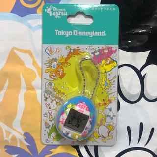 Disney - 新作♡ ポケットうさたま 本体 イースター ディズニーランド