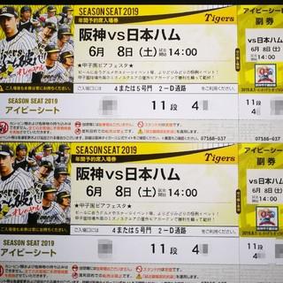 阪神vs日本ハム 6/8  セ・パ交流戦