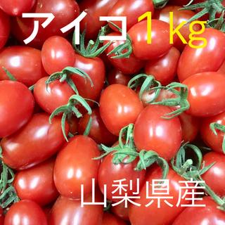 ミニトマト アイコ 山梨県産 1㎏ 明日21日発送 当日朝収穫 期間限定値下げ(野菜)