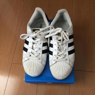 アディダス(adidas)のアディダス adidas スーパースター  24.5cm(スニーカー)