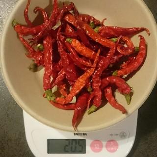 唐辛子 無農薬  20g×2袋(野菜)