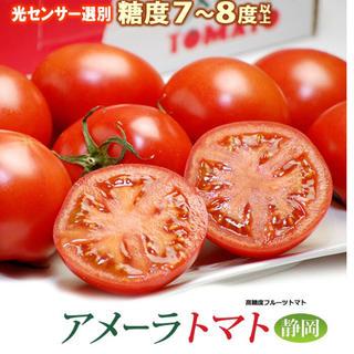 アメーラトマト フルーツトマト 一箱(野菜)