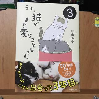 カドカワショテン(角川書店)のマンガ うちの猫がまた変なことしてる。3巻(その他)