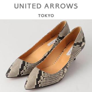 UNITED ARROWS - UNITED ARROWS UBMF ポインテッドパンプス パイソン 新品
