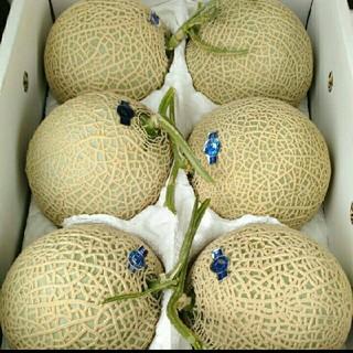 熊本県産 温室メロン5個入  なんと1玉約1.8k