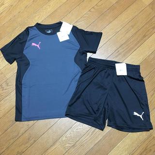 PUMA - プーマ DRY CELL 半袖Tシャツ150、パンツ 150新品