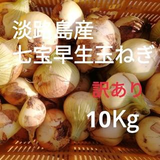 ☆訳あり10Kg☆淡路島新玉ねぎ