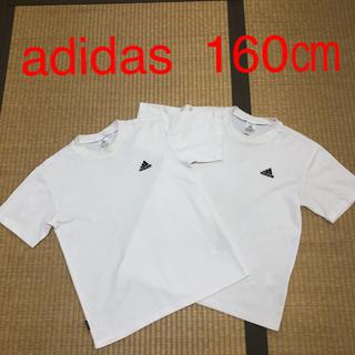 アディダス(adidas)の160㎝アディダス白色Tシャツ2枚セット(Tシャツ/カットソー)