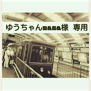 電車のジップバッグ(その他)
