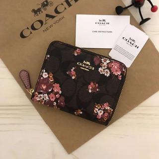 c6b314adc4e0 COACH - COACH 人気の長財布 新品 バラ色 F53763 長財布の通販|ラクマ