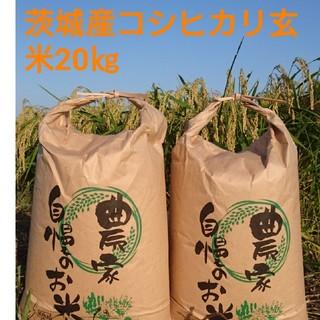 茨城30年産コシヒカリ玄米20㎏