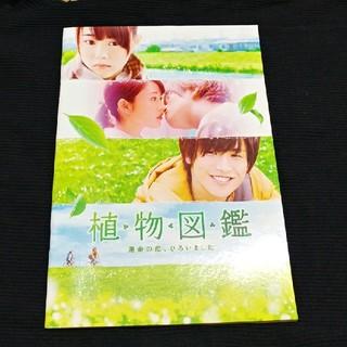 【美品】植物図鑑 映画パンフレット