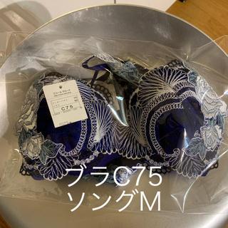 サージェントサルート(SERGEANT SALUTE)のサルート 愛人 ブラC75 ソングM タグ付き新品(ブラ&ショーツセット)