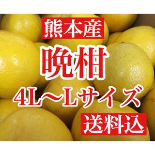 熊本産 河内晩柑(ジューシーオレンジ)  家庭用10キロ L〜4Lサイズ 送料込