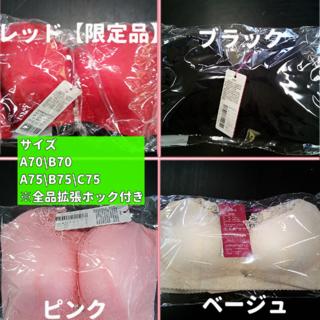 ☆★割引有り★☆【A70~C75】アウトレット◆育乳ナイトブラ上下セット(ブラ)
