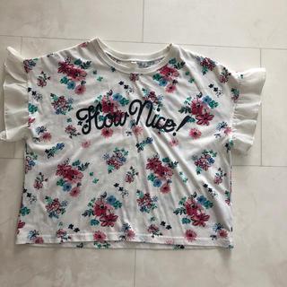 シマムラ(しまむら)の女の子トップ*140㎝*5月一杯の出品です!(Tシャツ/カットソー)