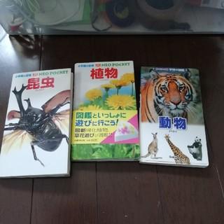 学研の図鑑  ポケット版  動物と小学館の図鑑 ネオポケット  NEO植物 昆虫(絵本/児童書)