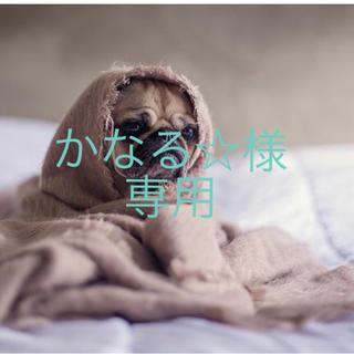 かなる☆様専用(その他)