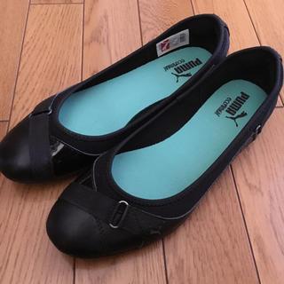 プーマ(PUMA)のpuma ☆ ペタンコ 靴 25.5cm 大きいサイズ プーマ(バレエシューズ)
