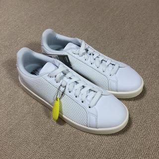 アディダス(adidas)の新品 アディダス adidas  クラウドフォーム  バルクリーン 26cm(スニーカー)