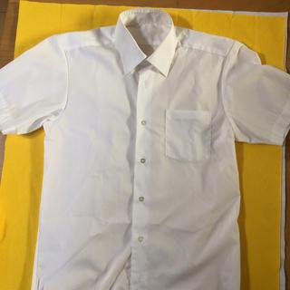 シマムラ(しまむら)の学生シャツ 男の子用 165cm (Tシャツ/カットソー)