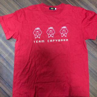 ZETT - CARP カピバラ3兄弟 Tシャツ